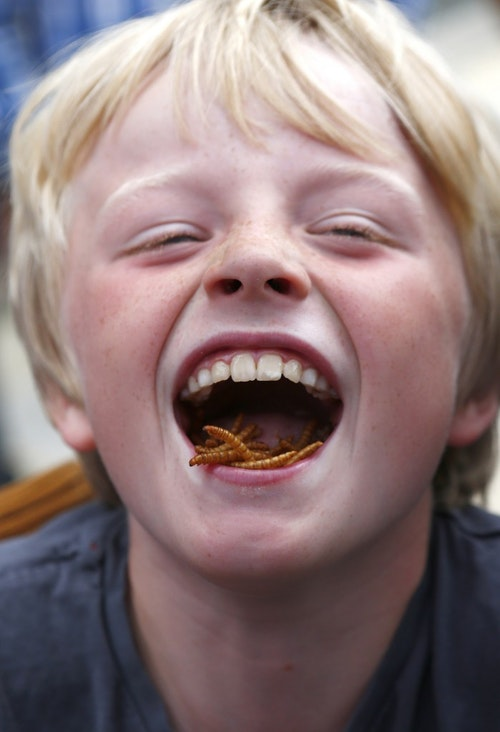 Stan Knight, age nine, poses for a photograph as he eats barbecued mealworms at a pop-up restaurant in central London