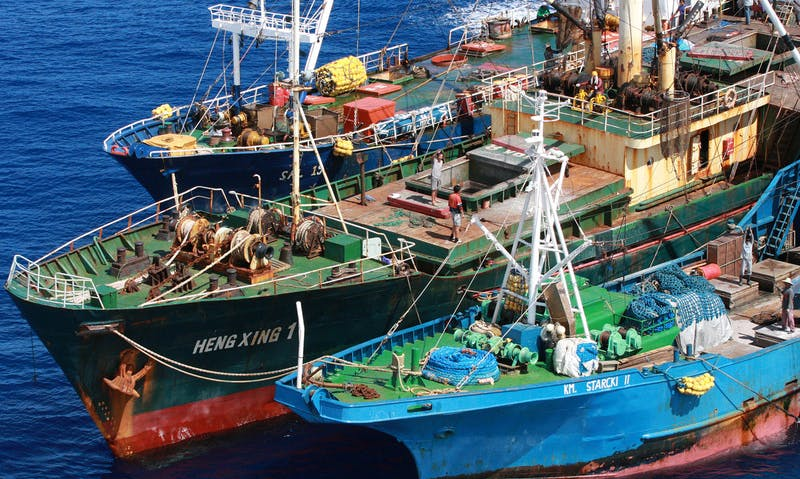 Taiwan Seafood Trader FCF Faces Financial Pressure on Links to Rights Abuses